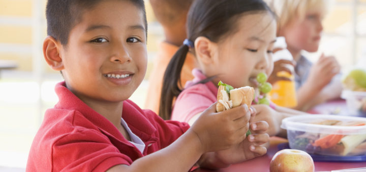 healthy lunch box ideas for picky eaters